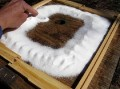 This is a VIDEO!!!  Feeding the Bees Raw Sugar at the Hive top Ventilation Hole using a spacer.