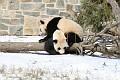 070216 Natl Zoo050