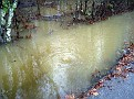 Flood 015