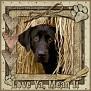 dcd-Love Ya, Mean It-In The Hay