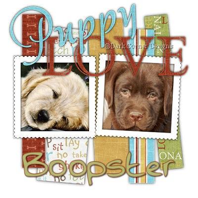 dcd-Boopster-PuppyLove.jpg