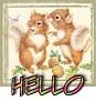 1Hello-cutesquir