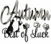 1Best of Luck-autcat-MC