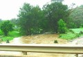 Bell River after flash flood 005