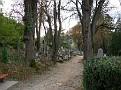 Graveyard at Sighisoara