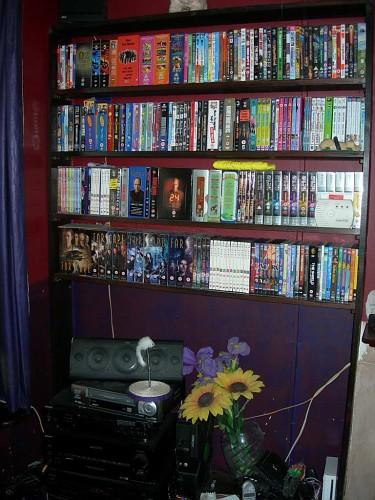 DVD Shelves1