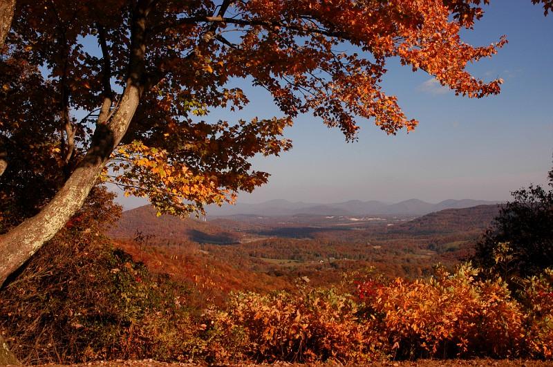 Autumn In Chestnut Cove