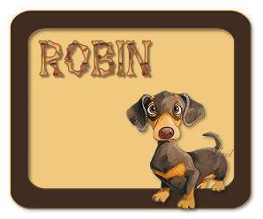 robin-gailz0306-dashound
