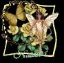 butterflyrosenatashaa