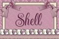 Shell - Elegance Scrap