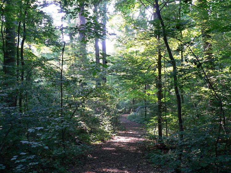 Longwood Garden 37