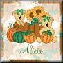 Bears ready for AutumnTagAlicia