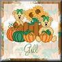 Bears ready for AutumnTagGill