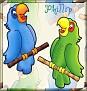 2 PBirdsPhillip