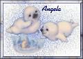 Baby Seals1Angela