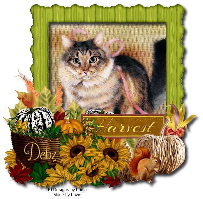 SHOW OFF THANKSGIVING TAGS Image2juuussvi-vi