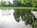 Fishing Sparks Md pond (10)