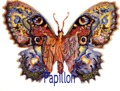 butterflies 128
