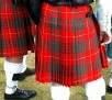 6046 Heres to the tartan