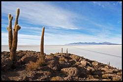 The Salt Desert