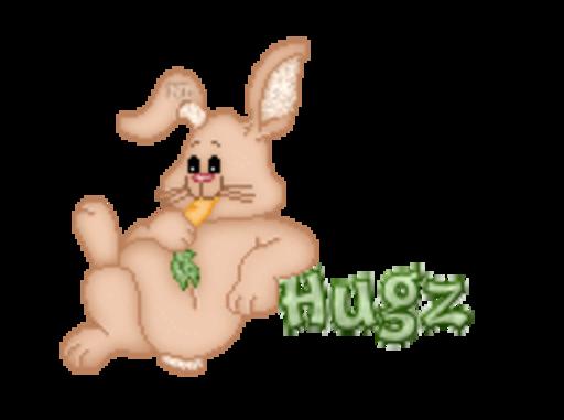 Hugz - BunnyWithCarrot