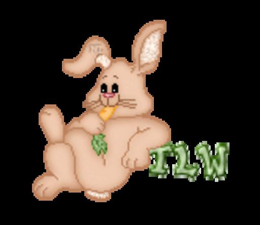 TLW - BunnyWithCarrot