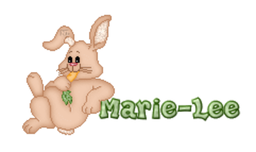 Marie-Lee - BunnyWithCarrot