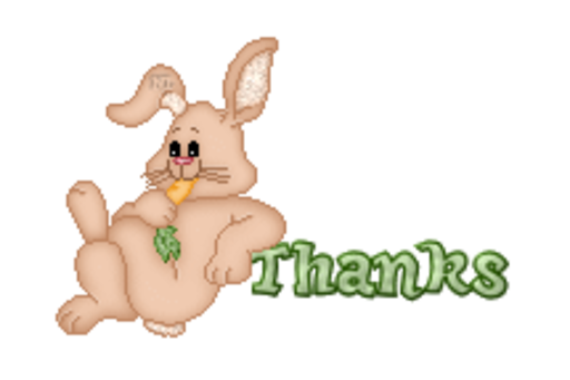 Thanks - BunnyWithCarrot