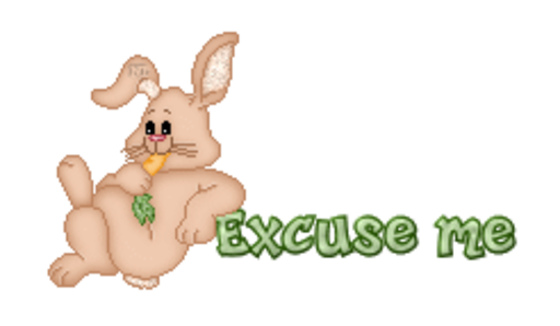 Excuse me - BunnyWithCarrot