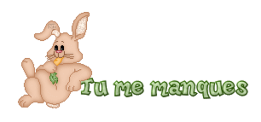 Tu me manques - BunnyWithCarrot