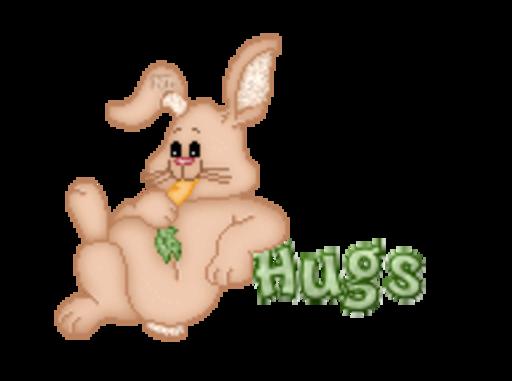 Hugs - BunnyWithCarrot