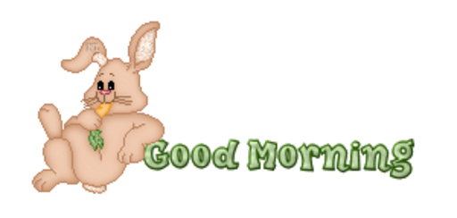 Good Morning - BunnyWithCarrot