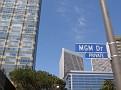 Century City Beverly Hills 014