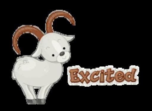 Excited - BighornSheep