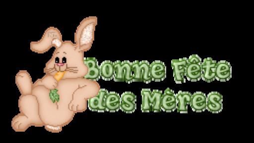Bonne Fete des Meres - BunnyWithCarrot