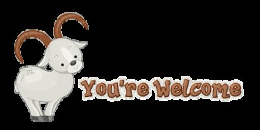 You're Welcome - BighornSheep