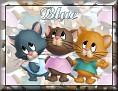 3 KittensBlue